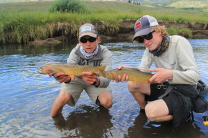Trophy Yellowstone Cutthroat coming in pairs!